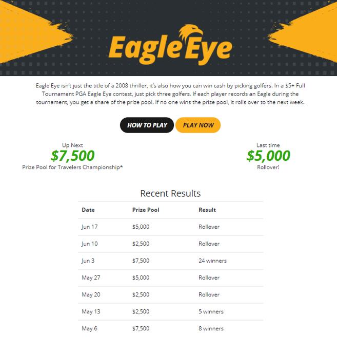 eagle eye screen